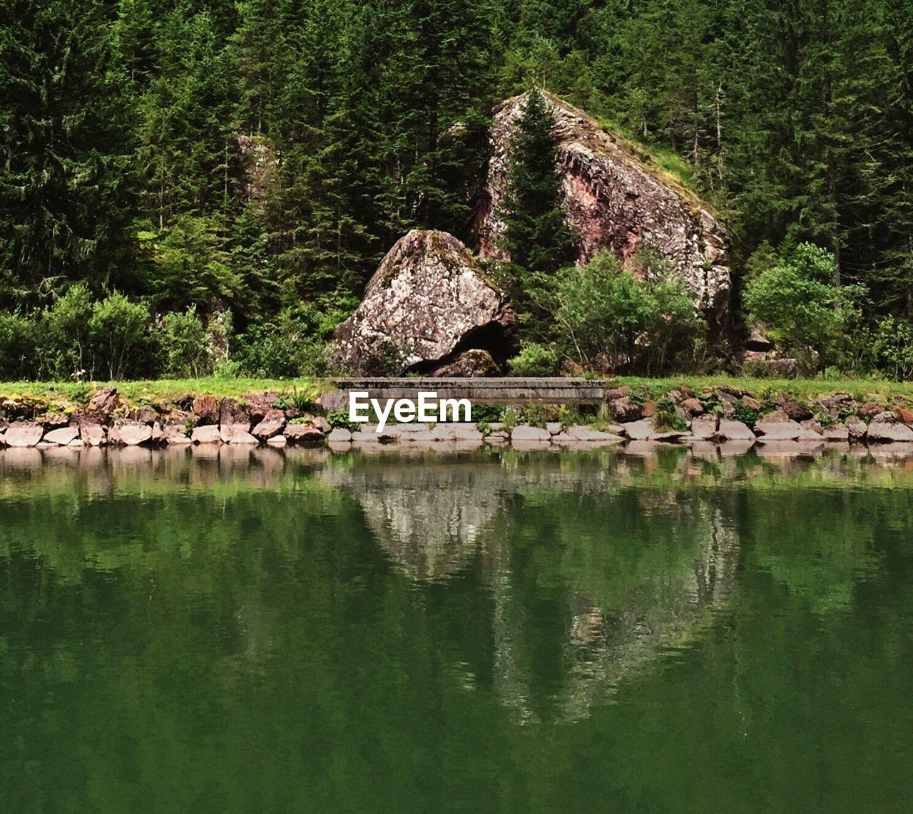 Rocks at lakeshore against trees
