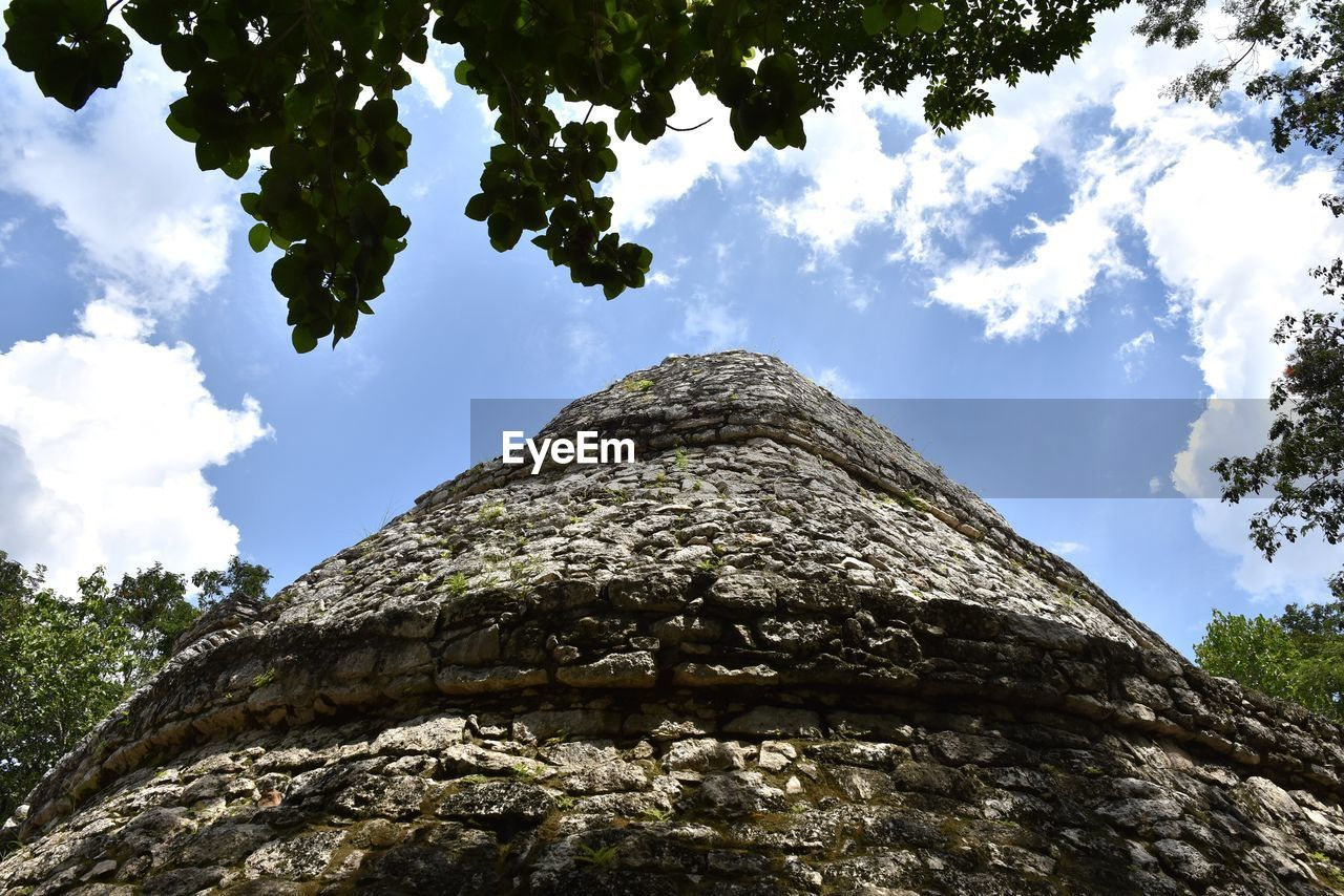 tree, low angle view, sky, cloud - sky, tree trunk, day, outdoors, nature, rock - object, rough, tranquility, textured, growth, no people, beauty in nature, branch