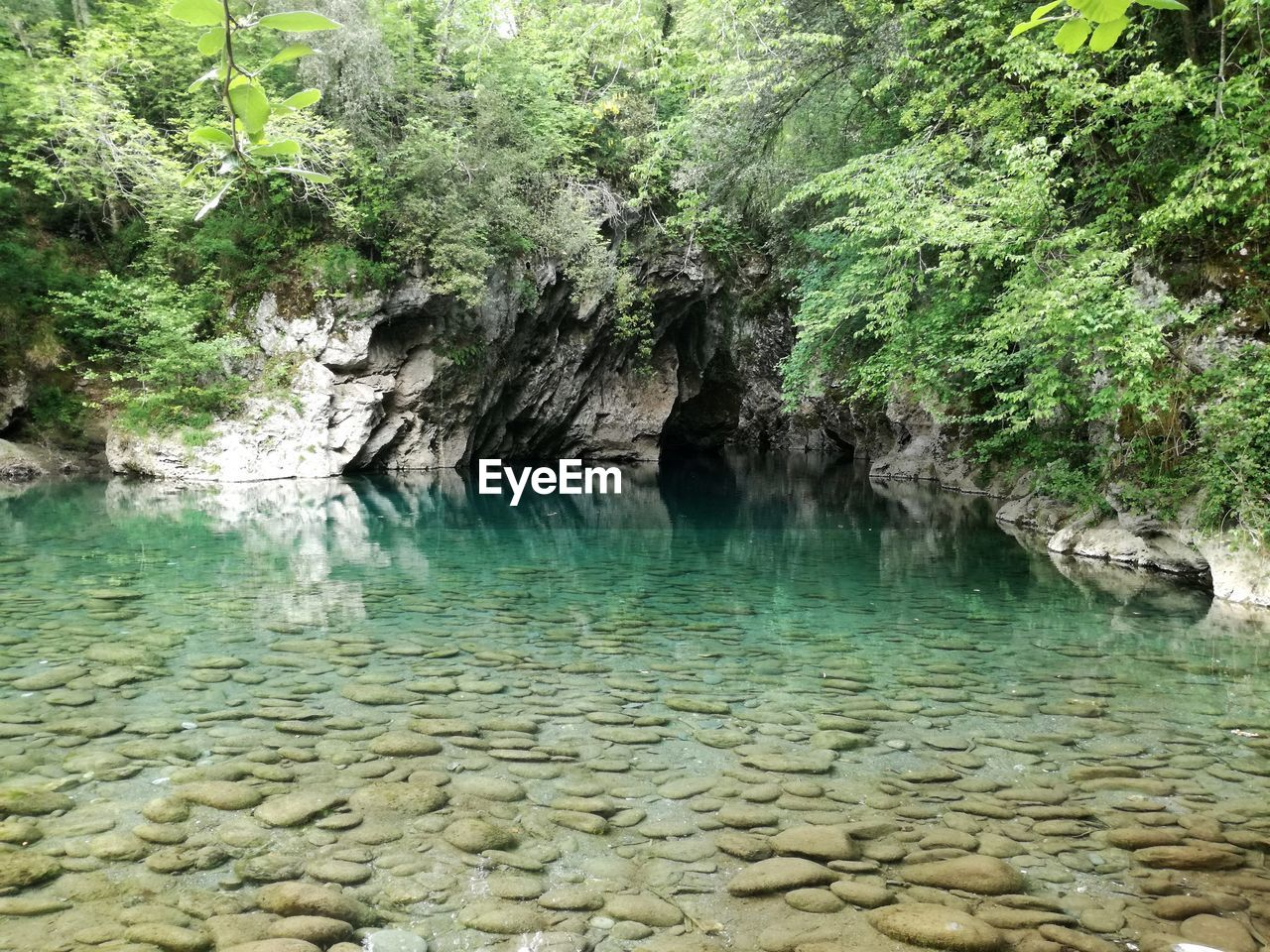 nature, rock - object, beauty in nature, water, tranquil scene, no people, tranquility, scenics, outdoors, day, tree