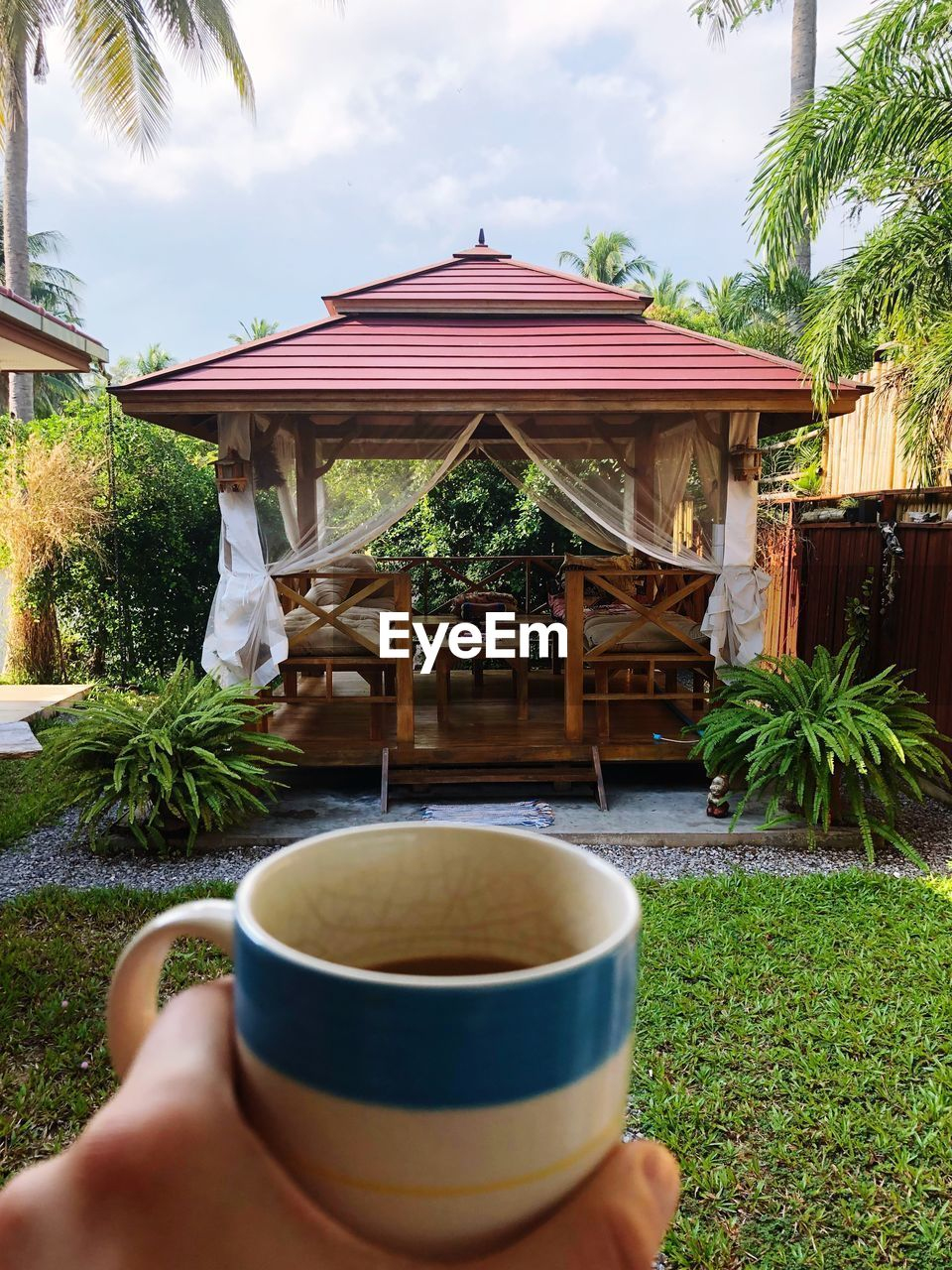 drink, refreshment, human hand, food and drink, one person, plant, human body part, cup, real people, hand, tree, nature, holding, mug, architecture, day, unrecognizable person, lifestyles, leisure activity, hot drink, outdoors