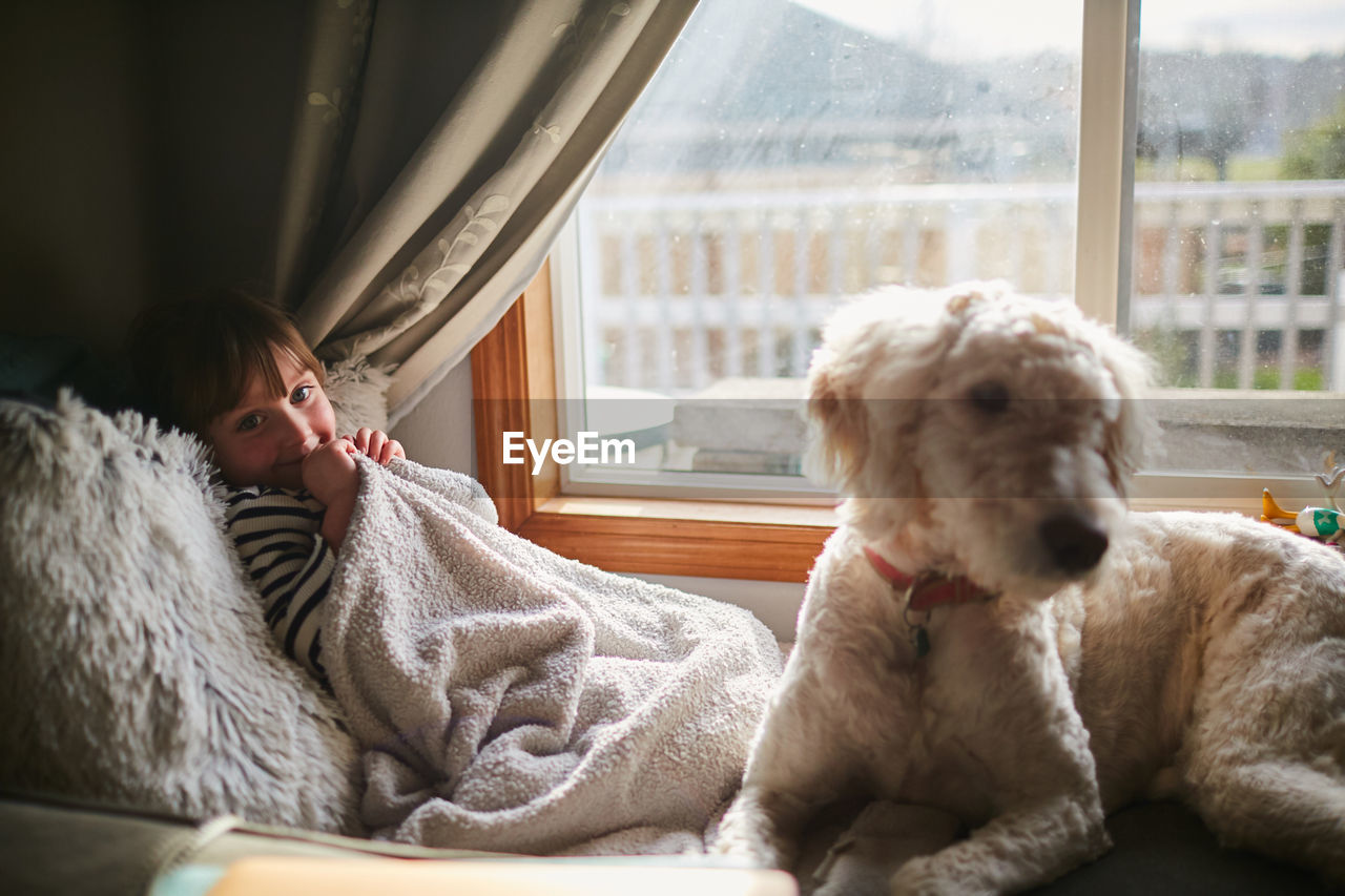 window, one animal, domestic animals, domestic, pets, mammal, dog, indoors, canine, one person, vertebrate, lifestyles, real people, home interior, day, relaxation, women, glass - material, pet owner
