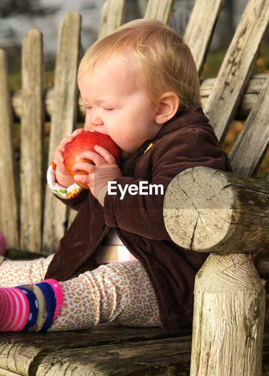 Cute Baby Girl Eating Apple While Sitting On Bench