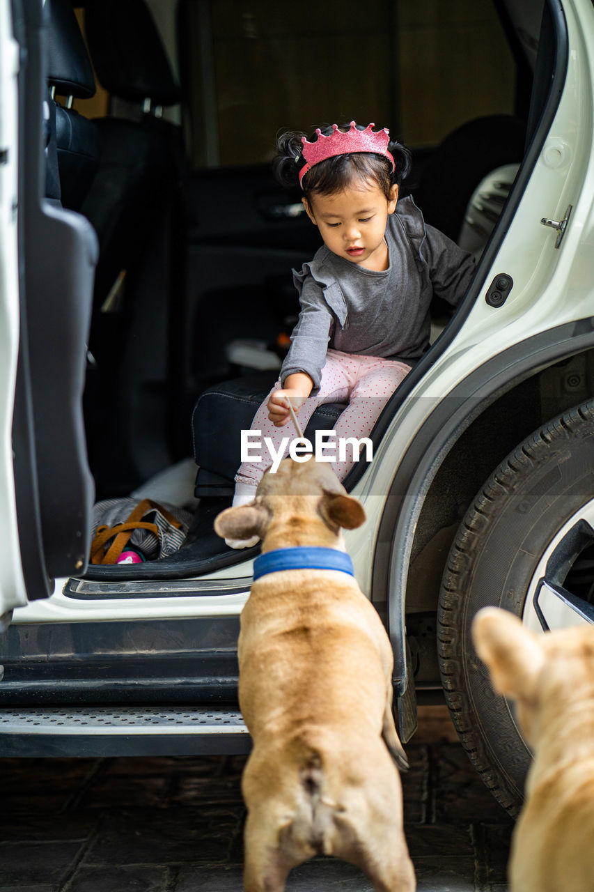 Girl playing with dogs while sitting in car