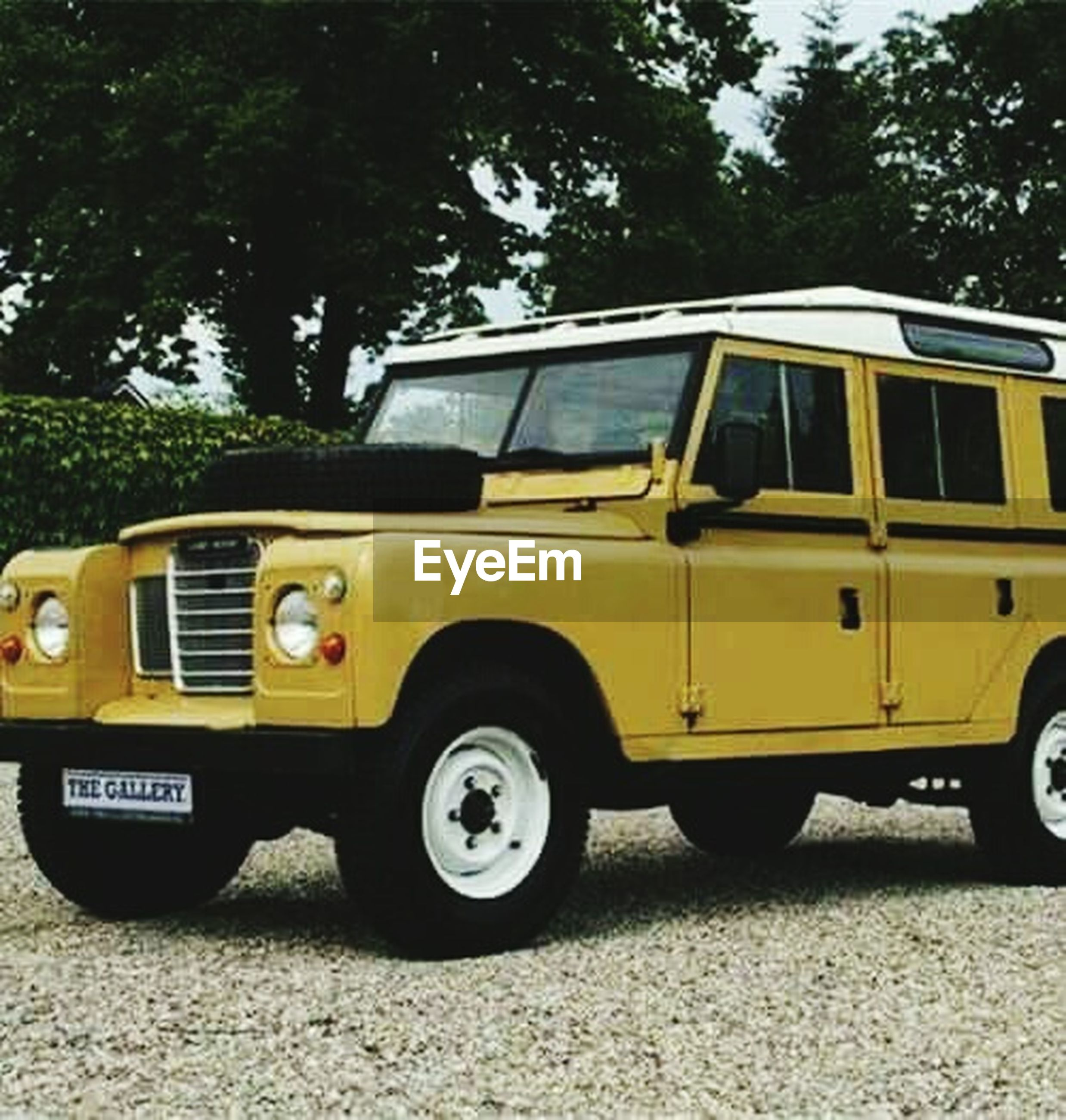 yellow, old-fashioned, land vehicle, tree, no people, outdoors, day