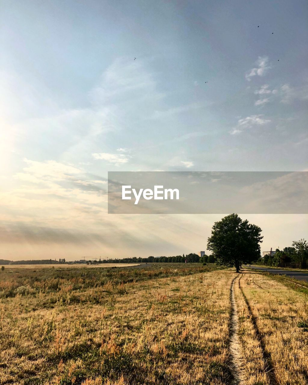 sky, environment, landscape, cloud - sky, field, land, plant, tranquil scene, tranquility, beauty in nature, nature, scenics - nature, tree, non-urban scene, no people, grass, horizon over land, day, rural scene, road, outdoors