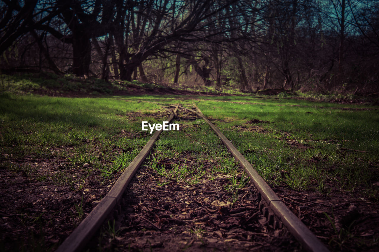 railroad track, tranquil scene, transportation, rail transportation, tranquility, tree, no people, nature, day, outdoors, grass, beauty in nature