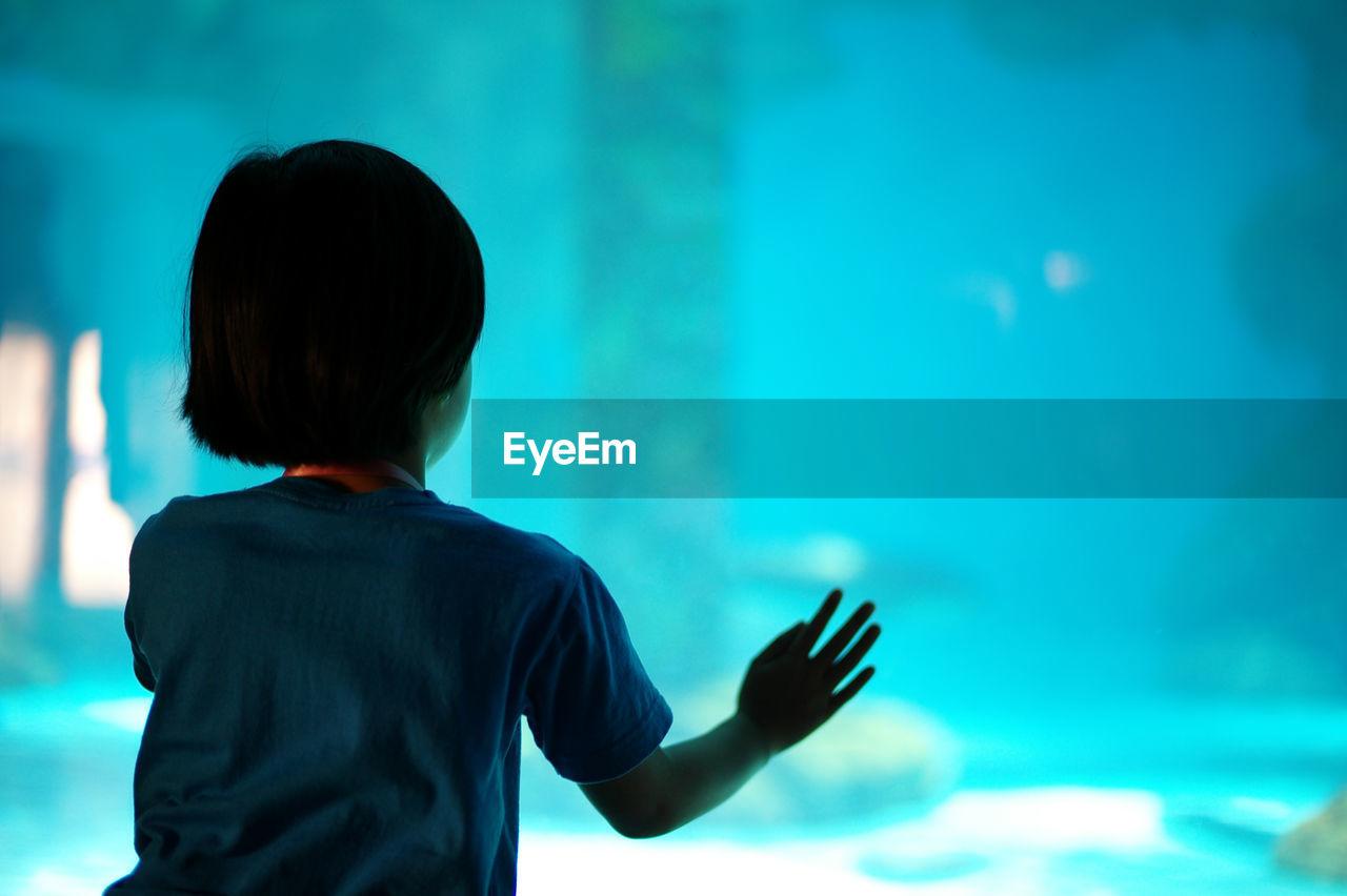 Rear view of girl looking at fish tank