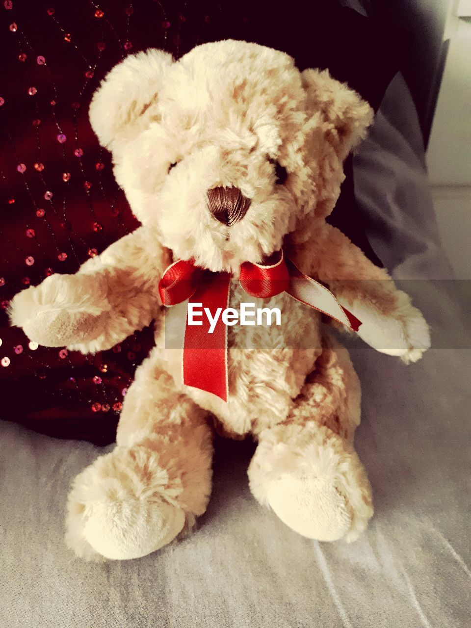 dog, one animal, pets, domestic animals, indoors, mammal, animal themes, cute, red, sitting, teddy bear, stuffed toy, close-up, no people, day