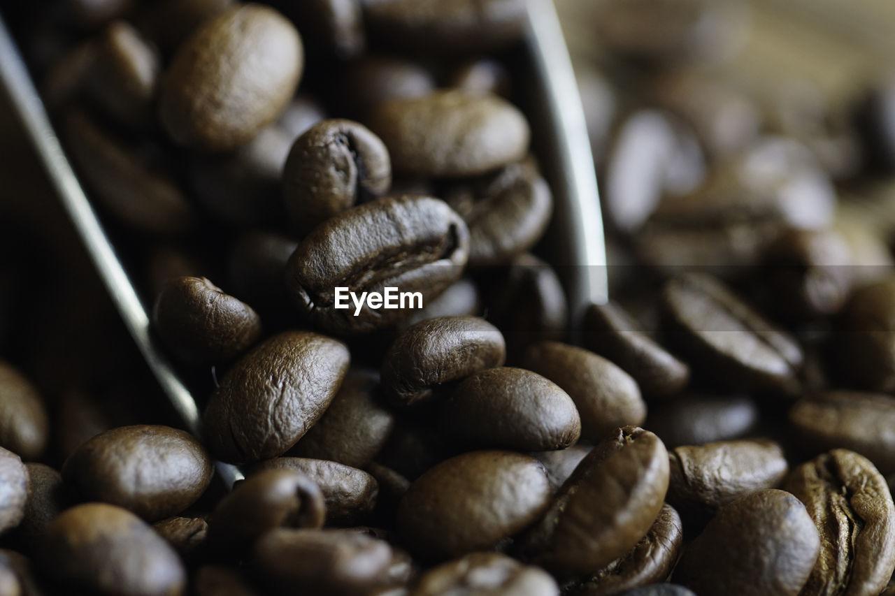 FULL FRAME SHOT OF COFFEE BEANS IN GLASS