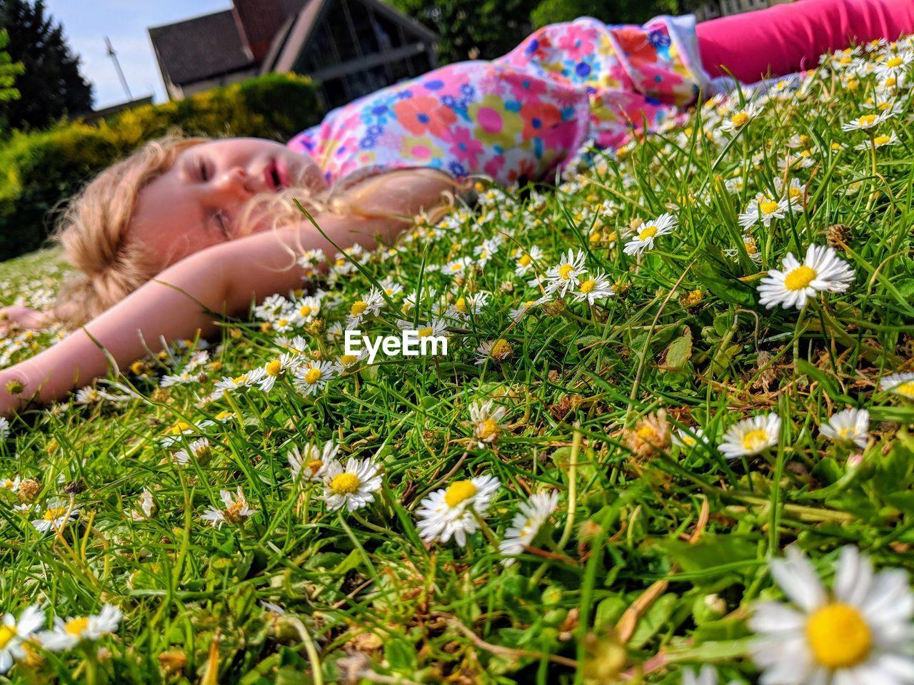 Side View Of Girl Lying Down On Flowering Field