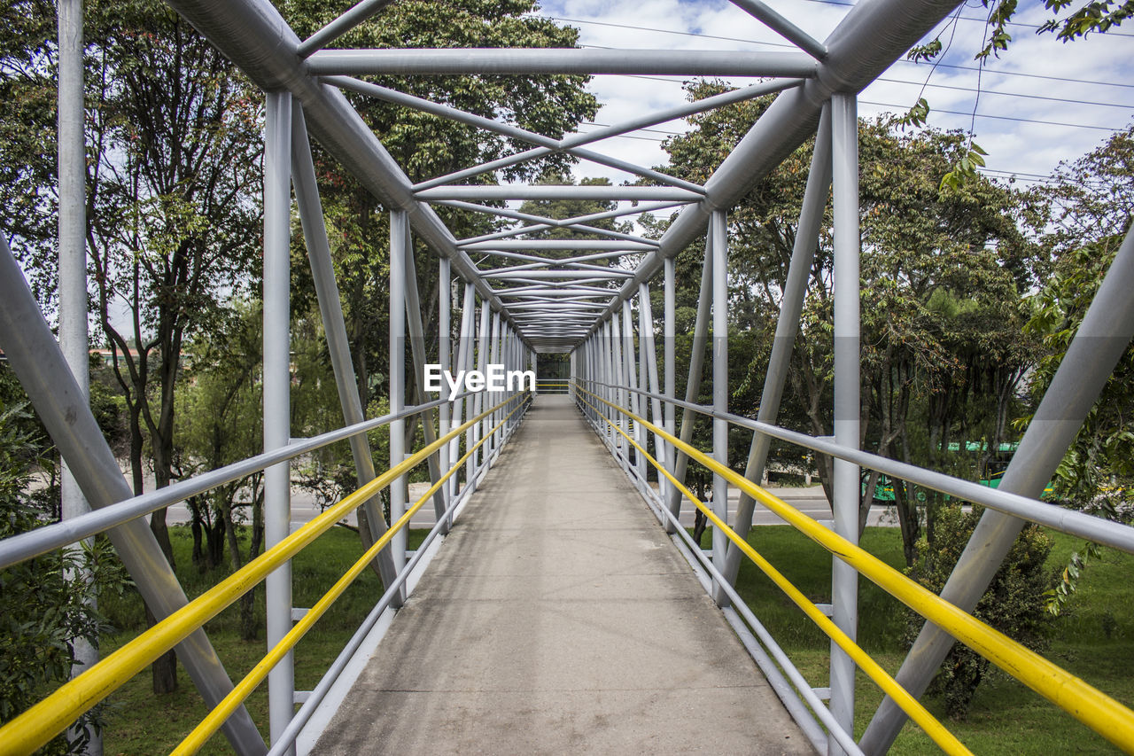 Elevated Walkway Bridge In Forest