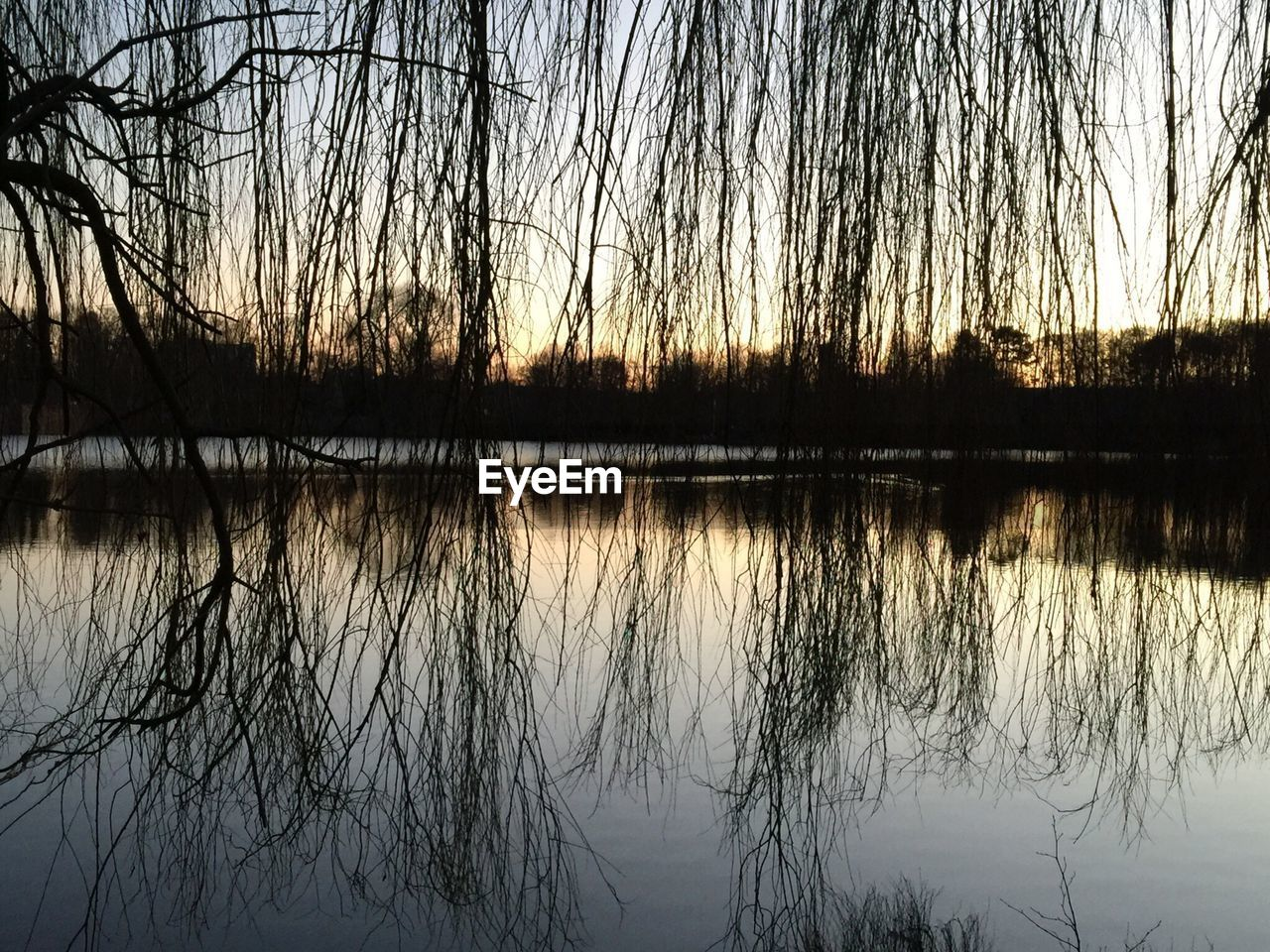 reflection, tranquility, nature, lake, tree, tranquil scene, beauty in nature, scenics, sunset, water, silhouette, bare tree, majestic, outdoors, idyllic, no people, sky, travel destinations, branch, day