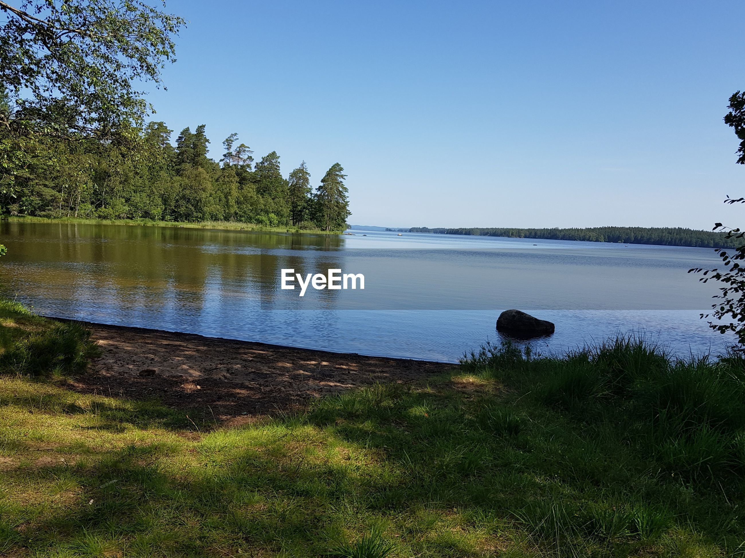 SCENIC VIEW OF LAKE AND TREES AGAINST CLEAR SKY