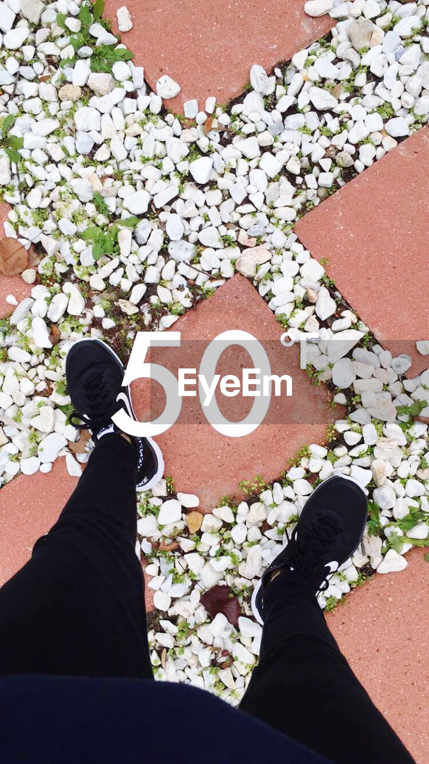 low section, high angle view, person, personal perspective, shoe, standing, lifestyles, directly above, day, outdoors, leaf, flower, cobblestone, footwear, men, human foot, plant