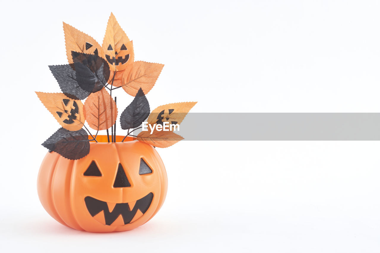 Close-up of halloween decoration against white background