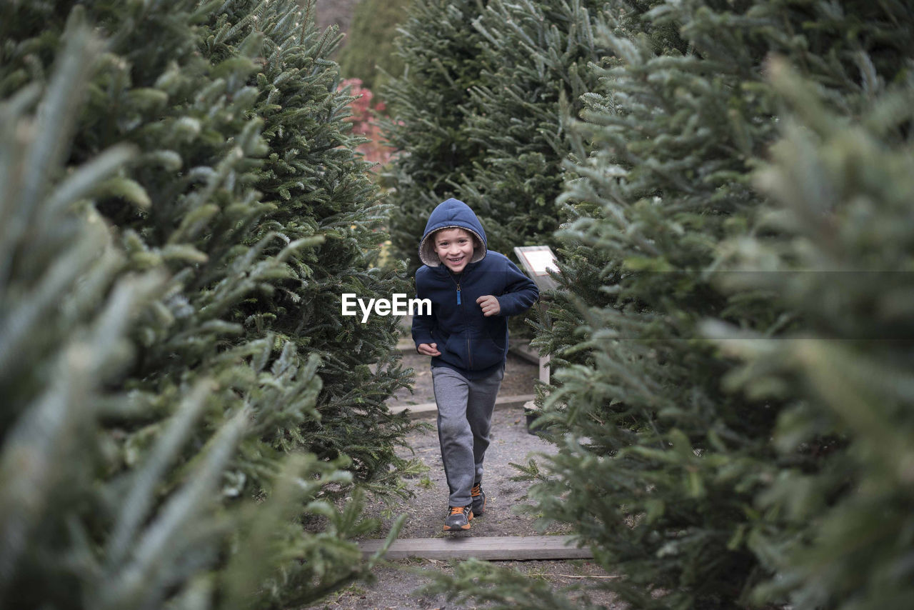 tree, plant, front view, one person, full length, winter, cold temperature, growth, clothing, nature, warm clothing, christmas, day, portrait, real people, christmas tree, looking at camera, selective focus, outdoors, fir tree