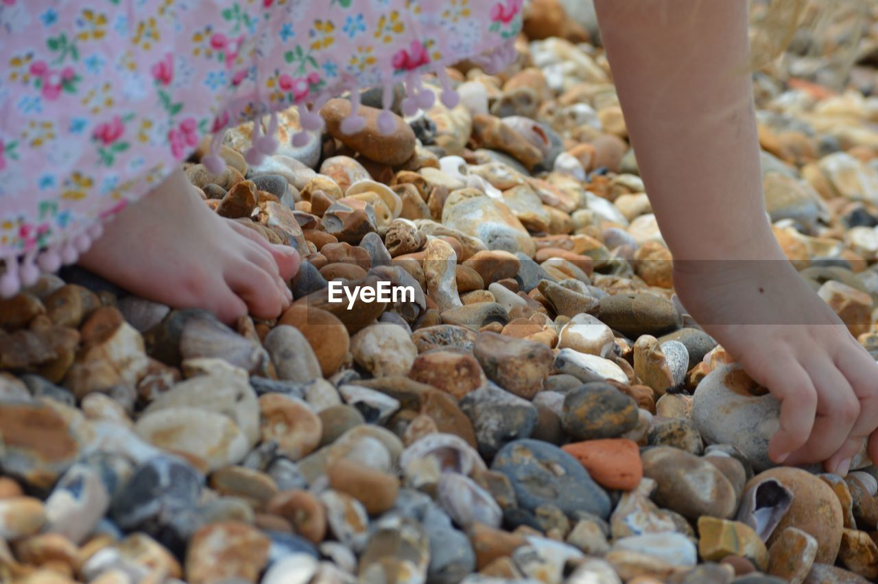 Low section of girl picking up pebbles