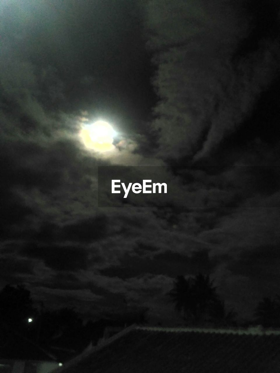cloud - sky, sky, night, moon, beauty in nature, tranquility, no people, nature, scenics - nature, moonlight, outdoors, tranquil scene, dark, low angle view, full moon, illuminated, plant, idyllic, tree, ominous