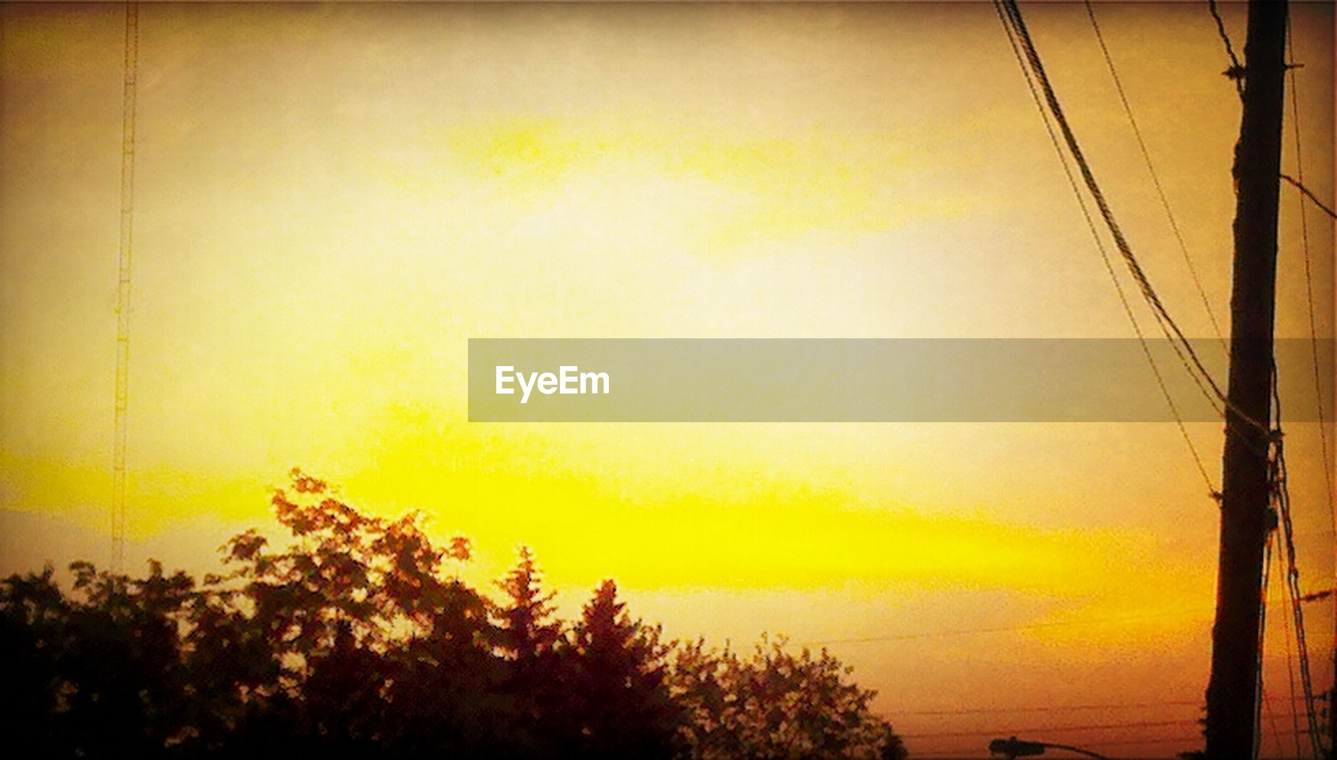 sunset, power line, tree, electricity, electricity pylon, tranquility, silhouette, orange color, beauty in nature, sky, scenics, tranquil scene, nature, power supply, cable, low angle view, growth, connection, idyllic, no people