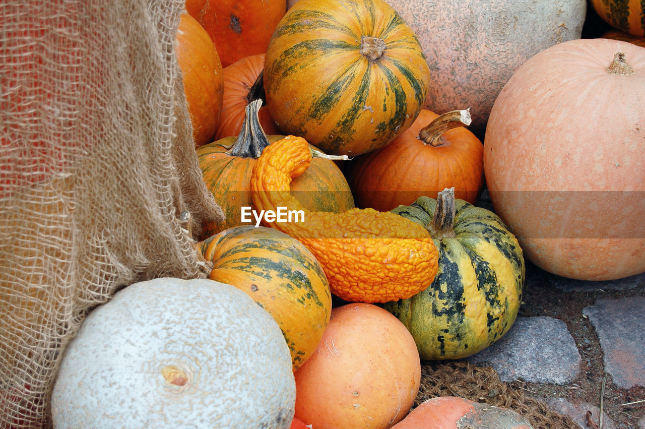 High angle view of pumpkins and squashes for sale in market