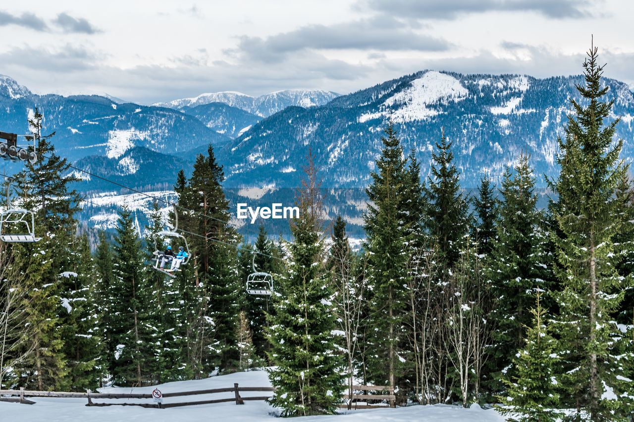 Trees On Snow Covered Field Against Mountains