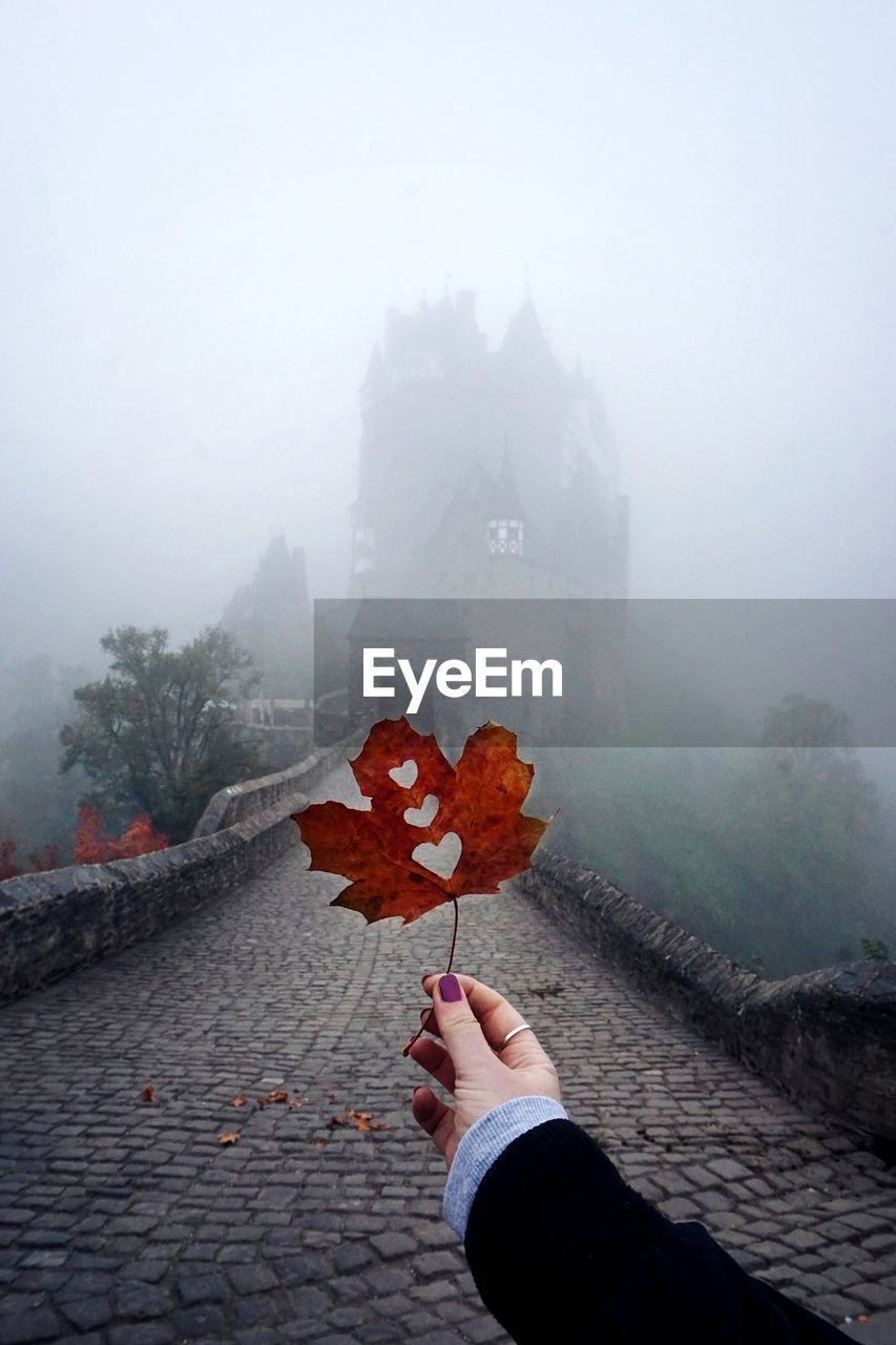 fog, real people, one person, autumn, holding, nature, human hand, hand, human body part, architecture, unrecognizable person, leaf, plant part, day, plant, city, lifestyles, change, outdoors, maple leaf, finger, rainy season