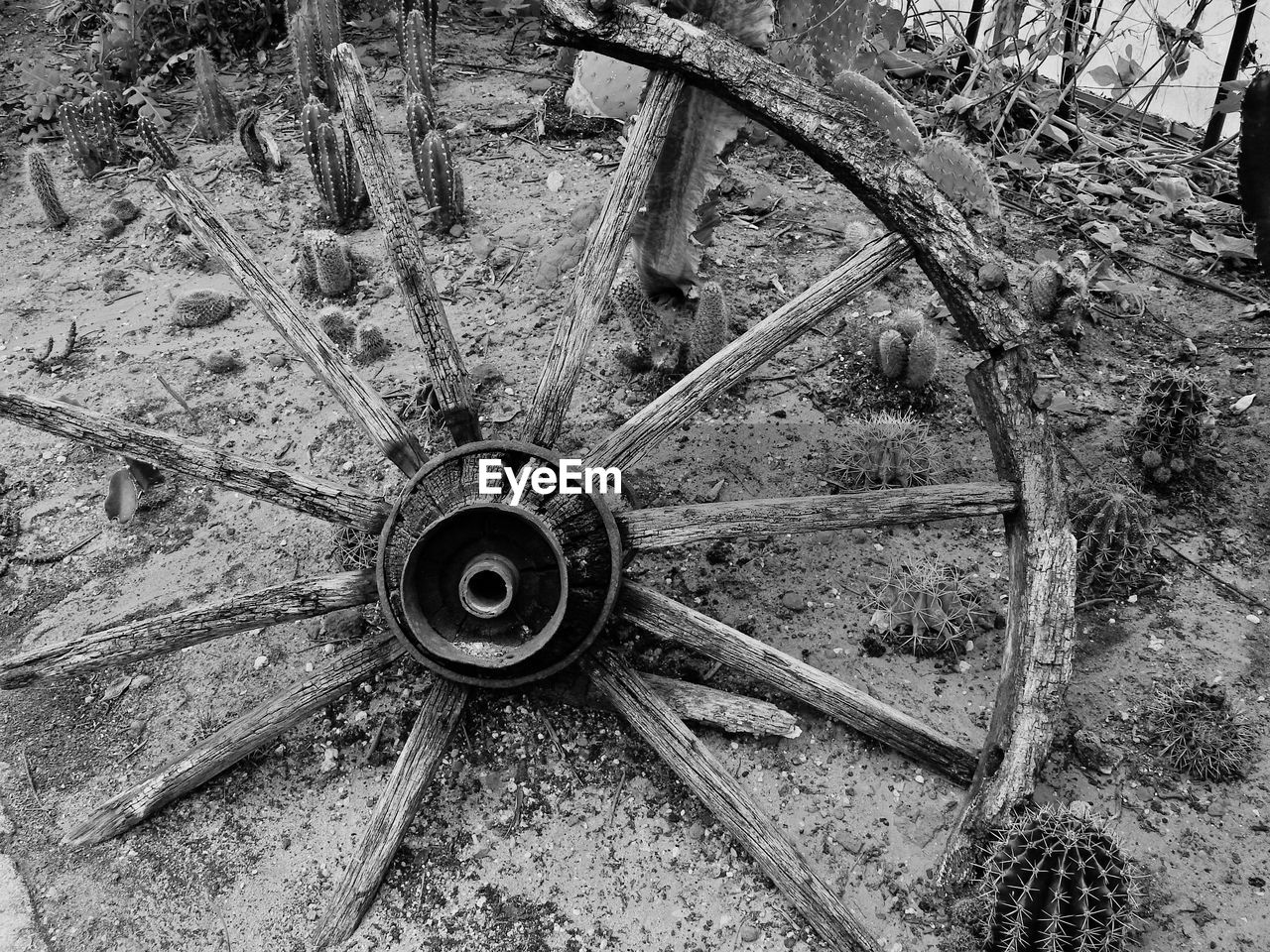 wheel, wagon wheel, transportation, spoke, mode of transport, old-fashioned, no people, day, tire, close-up, gear, outdoors