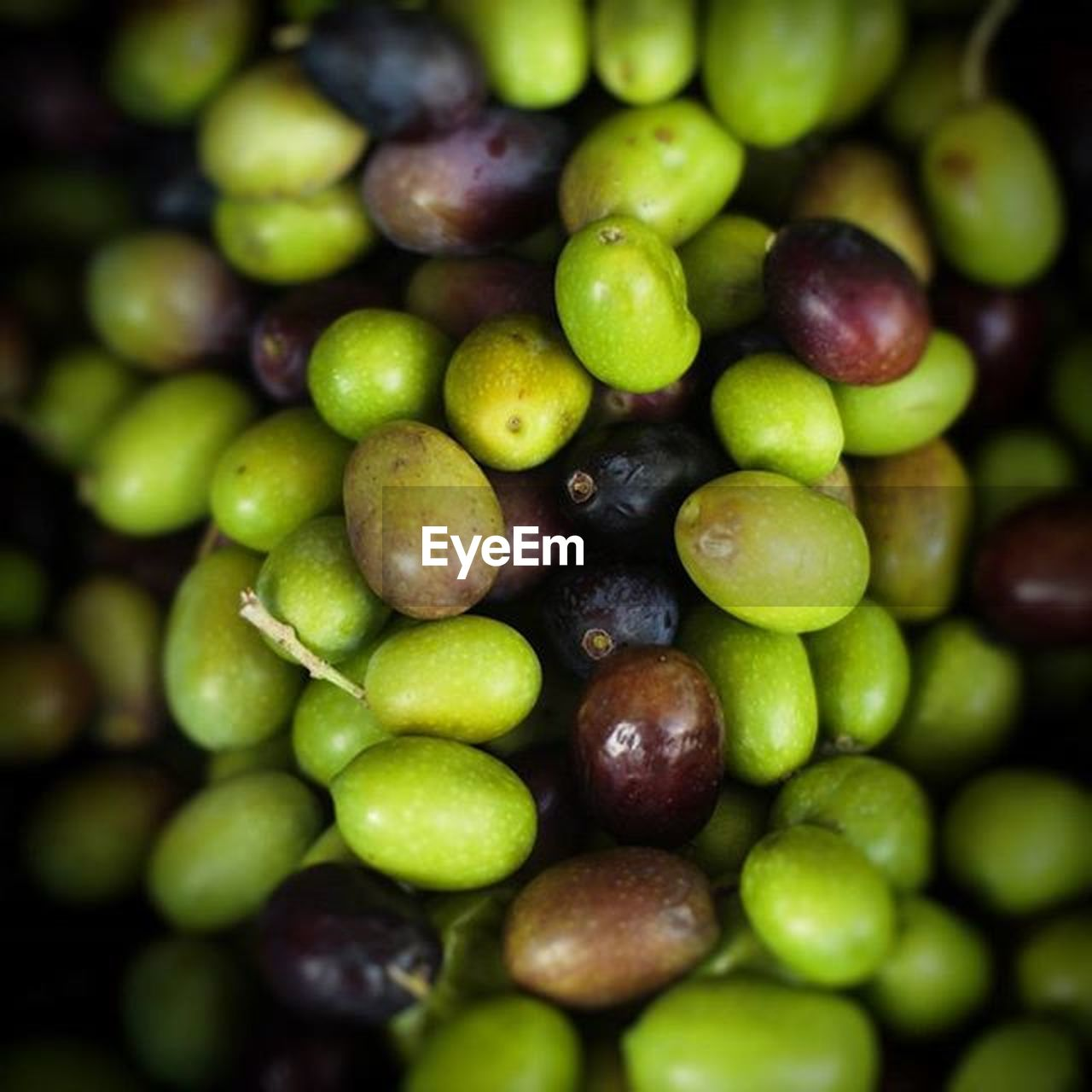 green color, fruit, healthy eating, food and drink, full frame, bunch, freshness, agriculture, abundance, grape, no people, food, day, olive, close-up, backgrounds, large group of objects, outdoors, nature