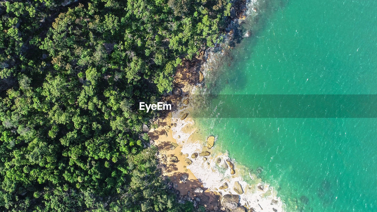 sea, water, green color, beauty in nature, nature, high angle view, day, no people, plant, scenics - nature, land, growth, beach, tranquility, outdoors, tranquil scene, tree, rock, sunlight, turquoise colored, marine