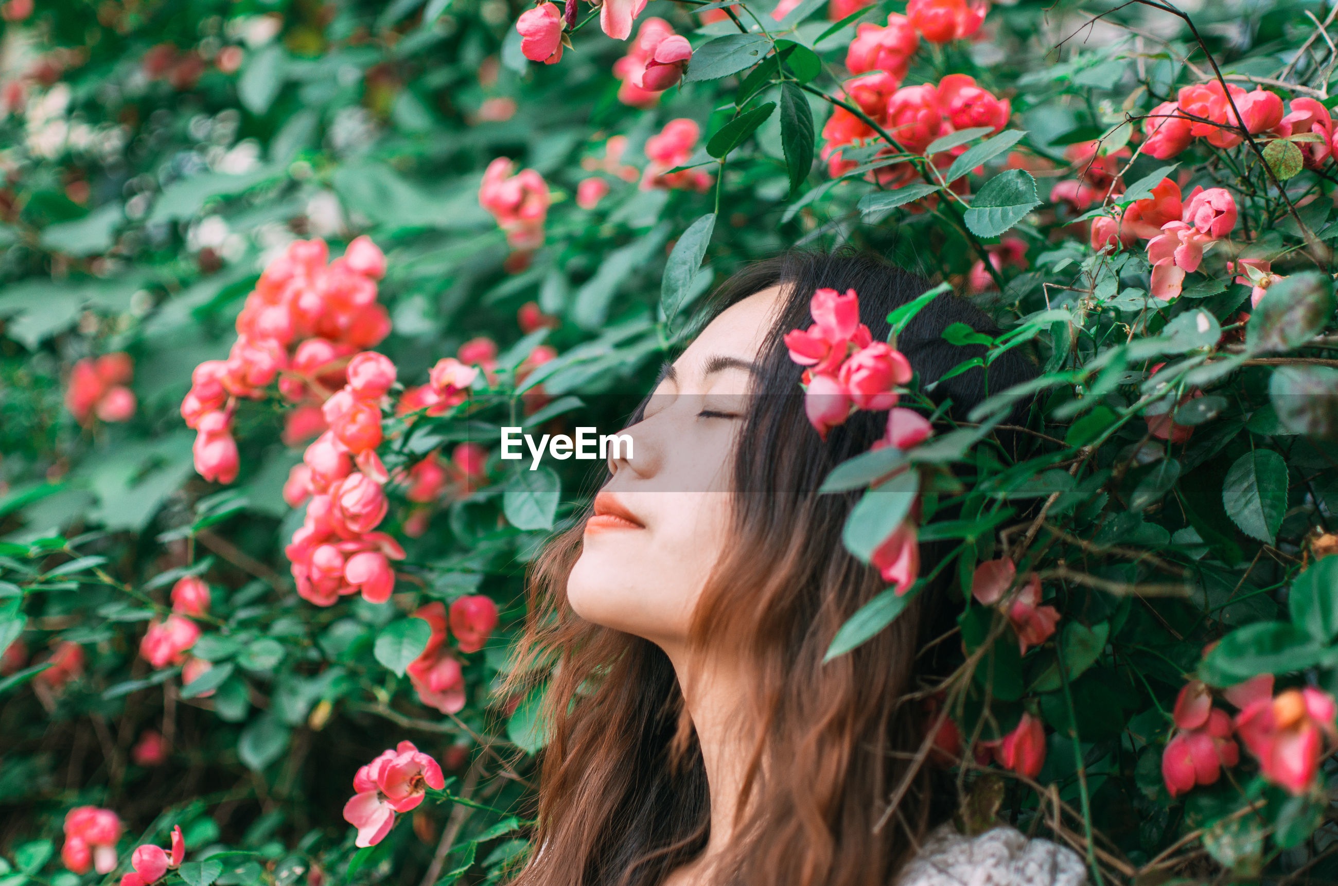 Portrait of young woman day dreaming by flower bush