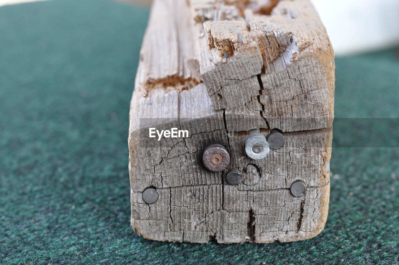 close-up, wood - material, focus on foreground, no people, day, nature, tree, outdoors, textured, plant, tree trunk, trunk, screw, bark, wood, shape, metal, tree stump, timber, selective focus