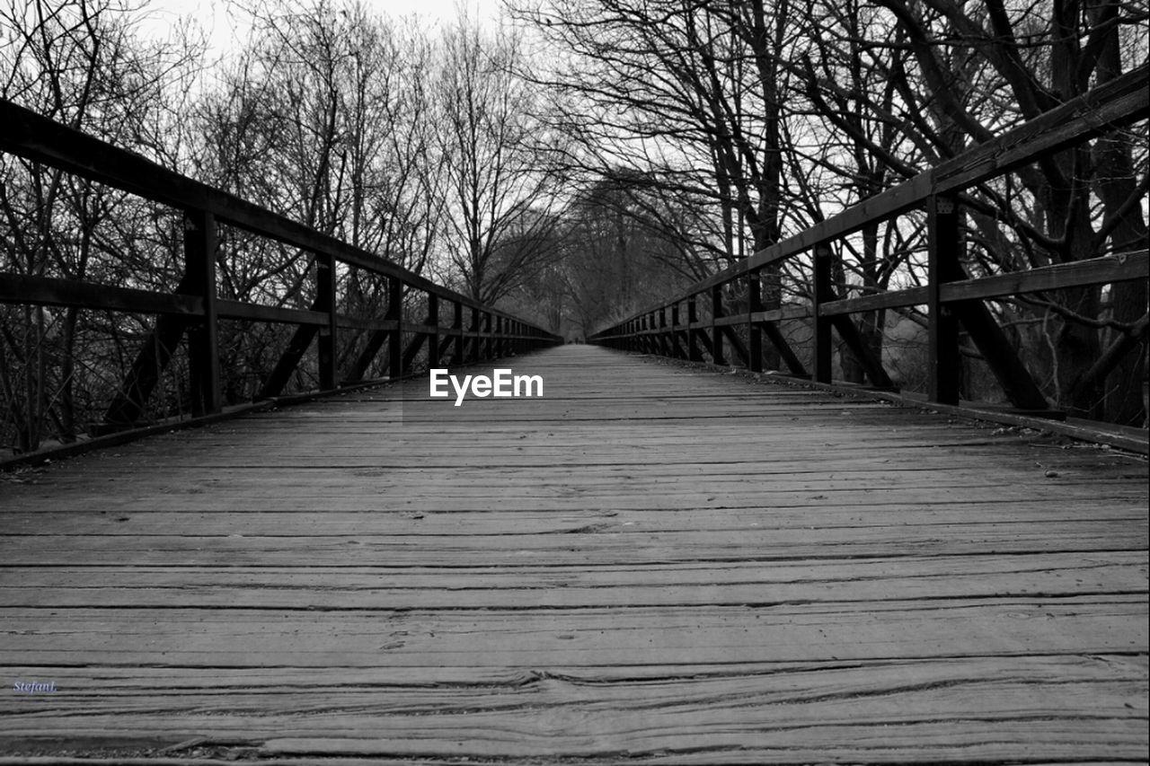 Footbridge Amidst Bare Trees