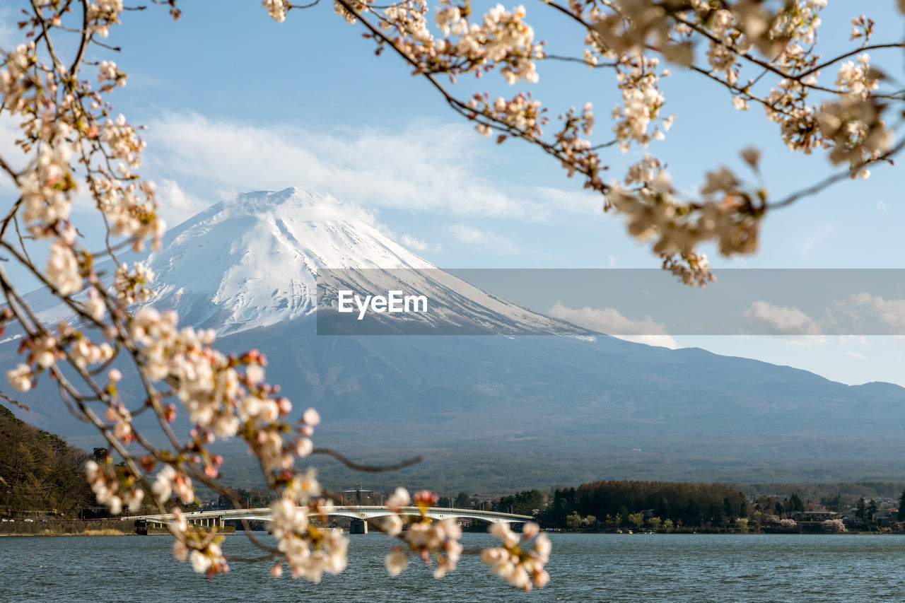 Scenic View Of Cherry Blossom By Lake Against Sky