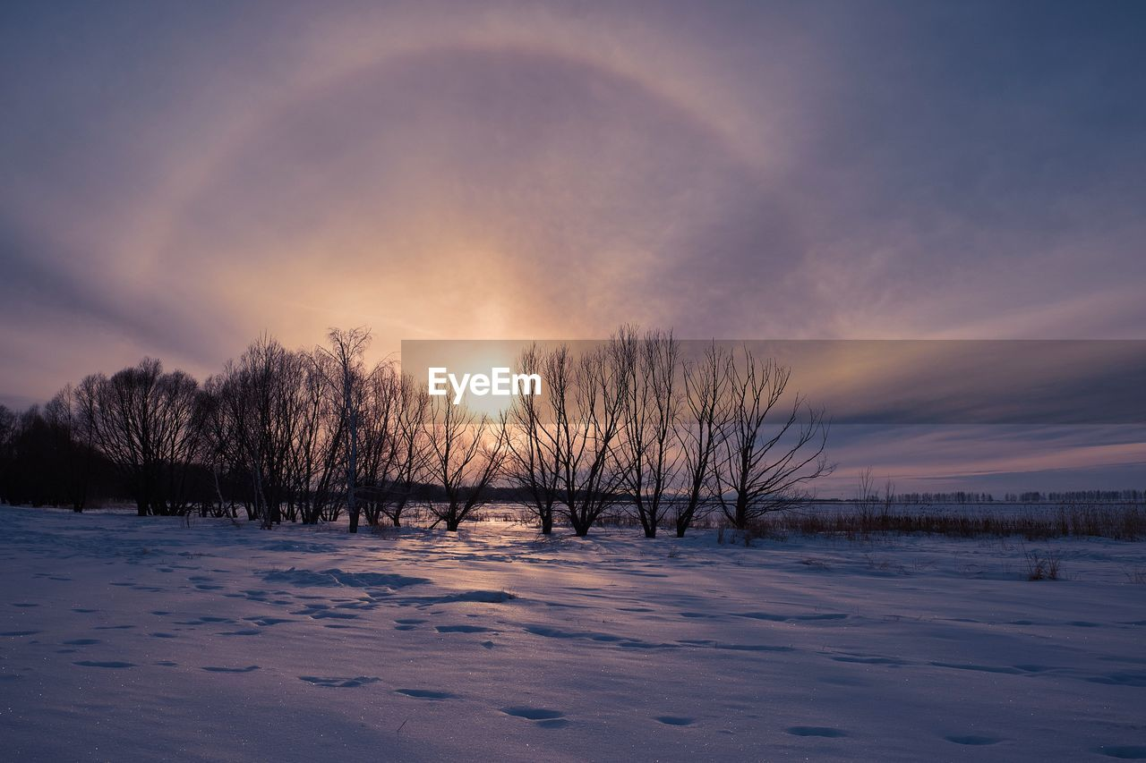 winter, cold temperature, snow, sky, beauty in nature, tranquility, tree, scenics - nature, tranquil scene, sunset, plant, bare tree, field, cloud - sky, no people, nature, landscape, environment, non-urban scene, cold