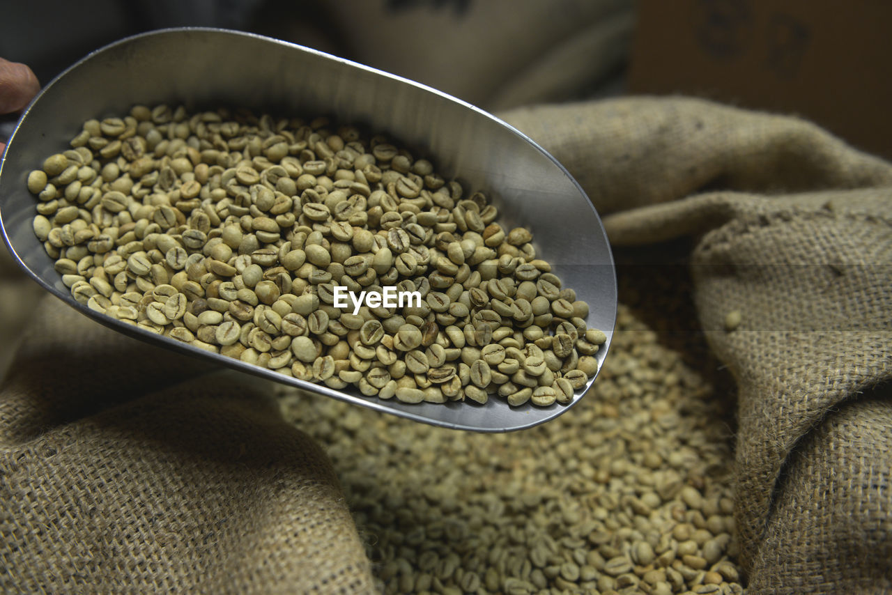 Raw coffee beans in spoon