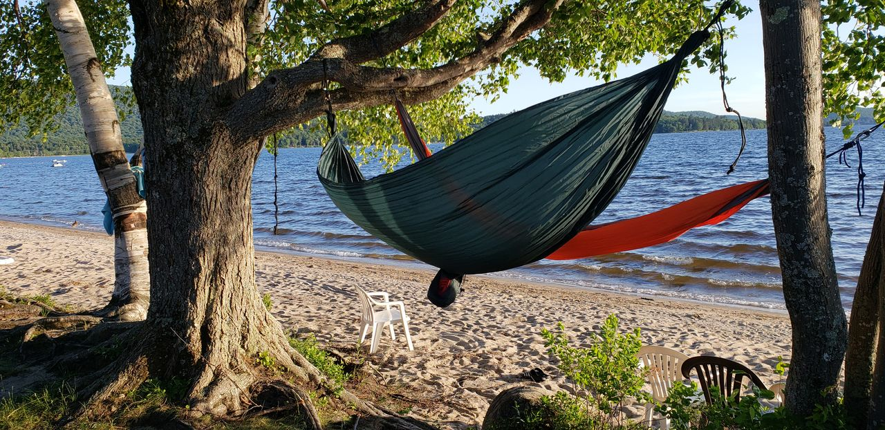 Hammocks hanging from trees at beach