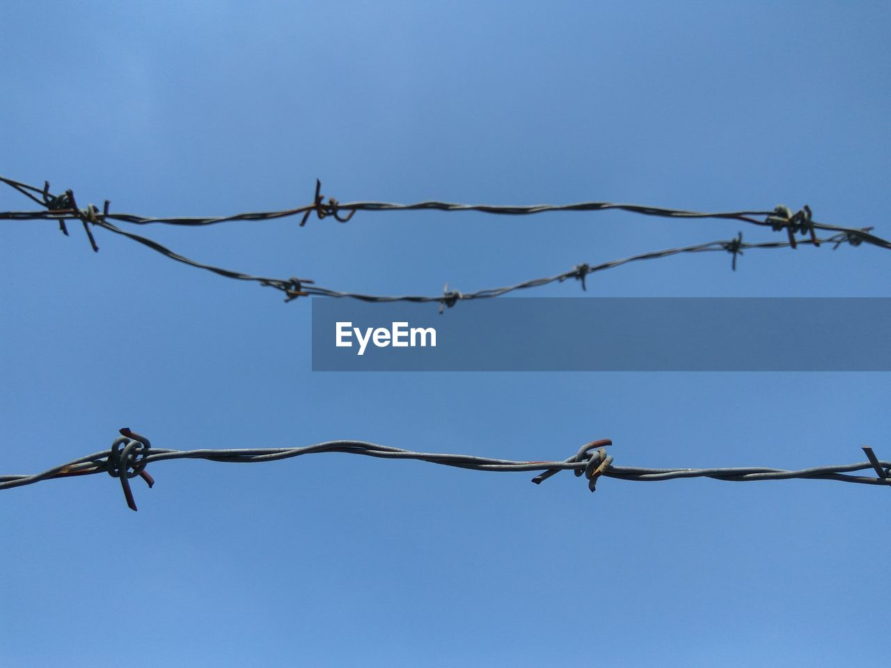 protection, safety, security, fence, wire, sky, barbed wire, metal, barrier, boundary, sharp, low angle view, nature, no people, day, blue, close-up, clear sky, outdoors, focus on foreground