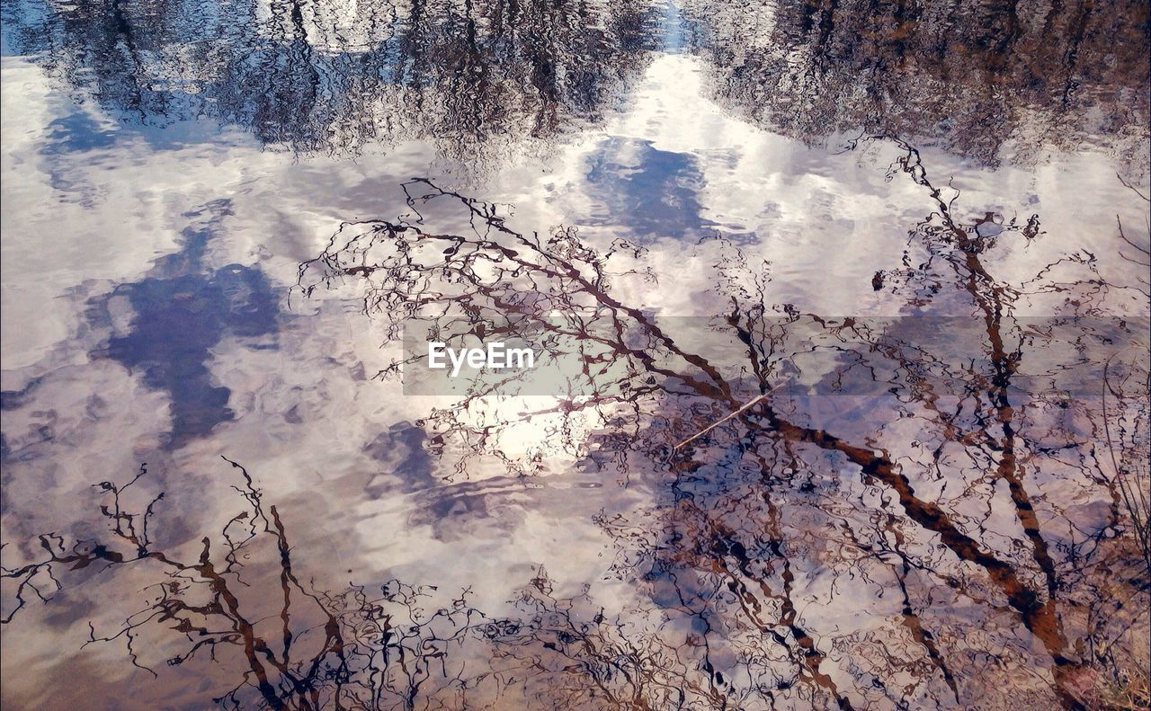 Reflection of cloudy sky and bare trees on water