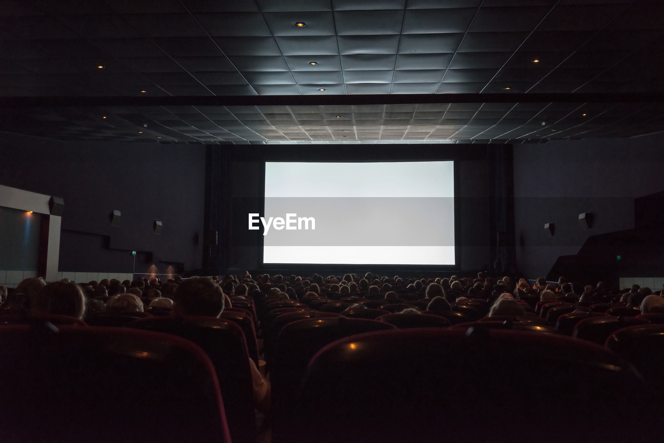 Rear view of audience in movie theater