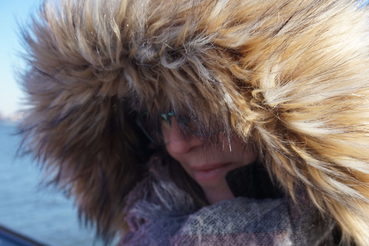 fur, close-up, one animal, one person, warm clothing, hair, headshot, women, winter, mammal, real people, cold temperature, fur coat, animal hair, portrait, domestic, pets, hood, hood - clothing, fur hat