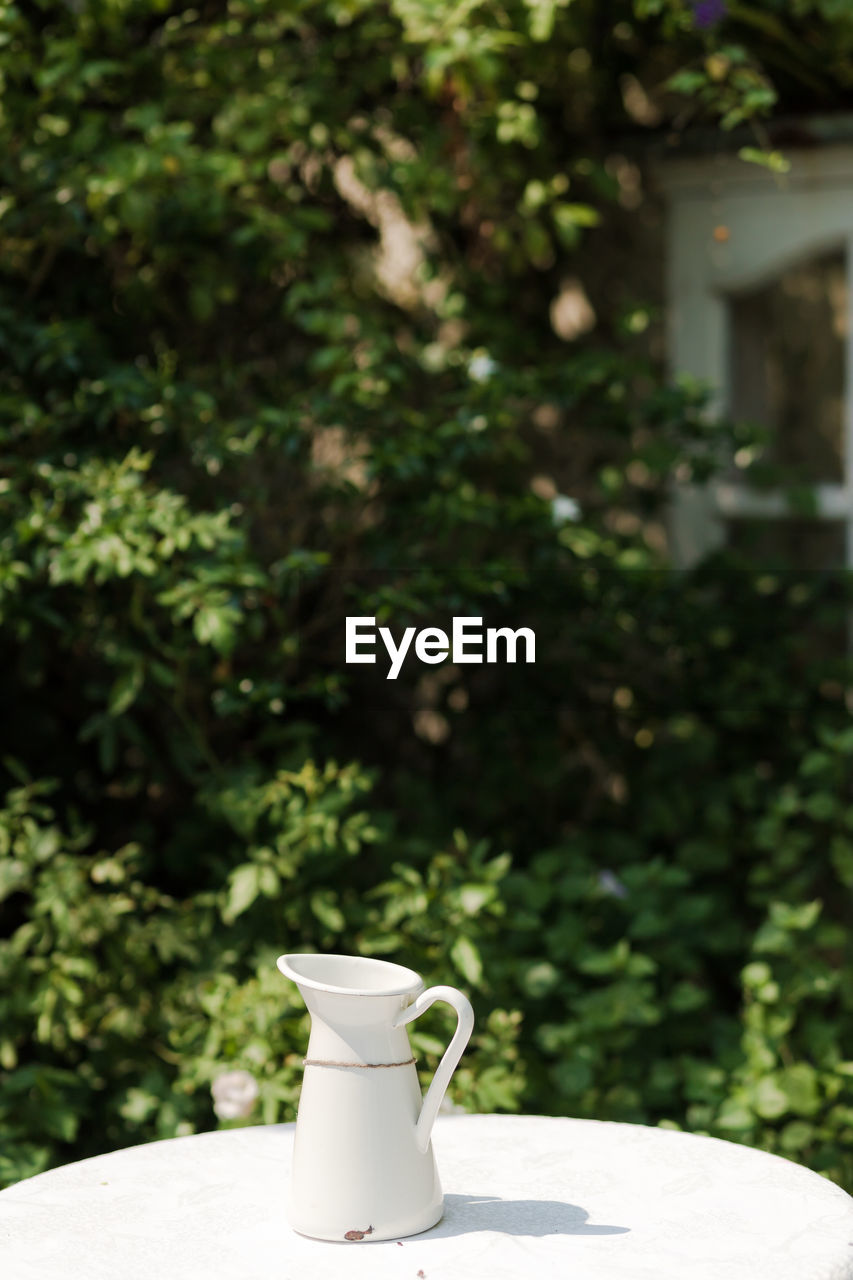 table, cup, no people, focus on foreground, plant, food and drink, day, mug, nature, still life, white color, tree, green color, drink, outdoors, refreshment, front or back yard, growth, shadow, sunlight, crockery, pitcher - jug