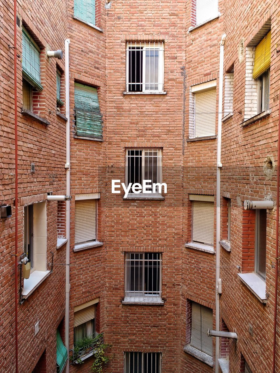 WINDOWS OF A RESIDENTIAL BRICK BUILDING
