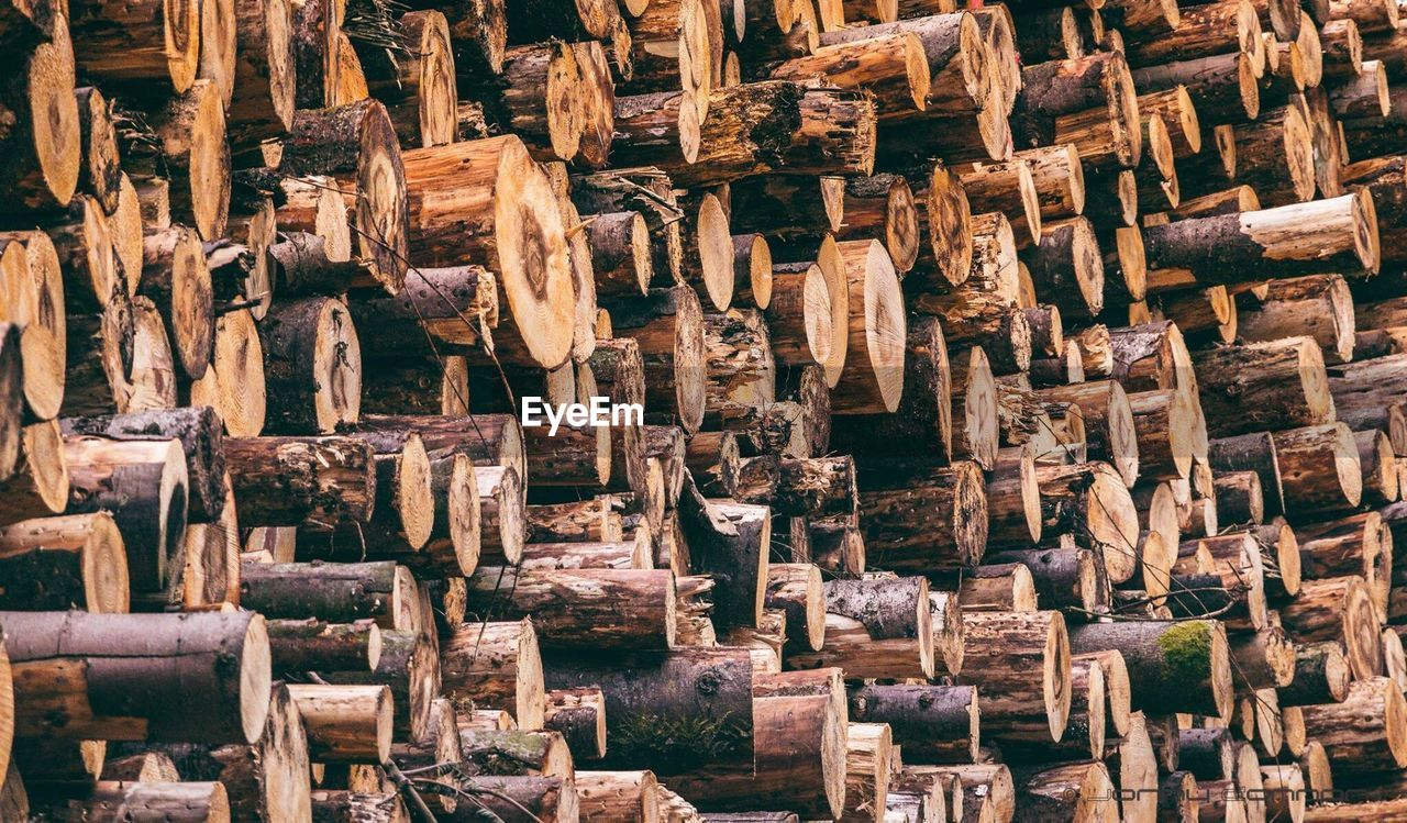 Full Frame Shot Of Firewood Stack