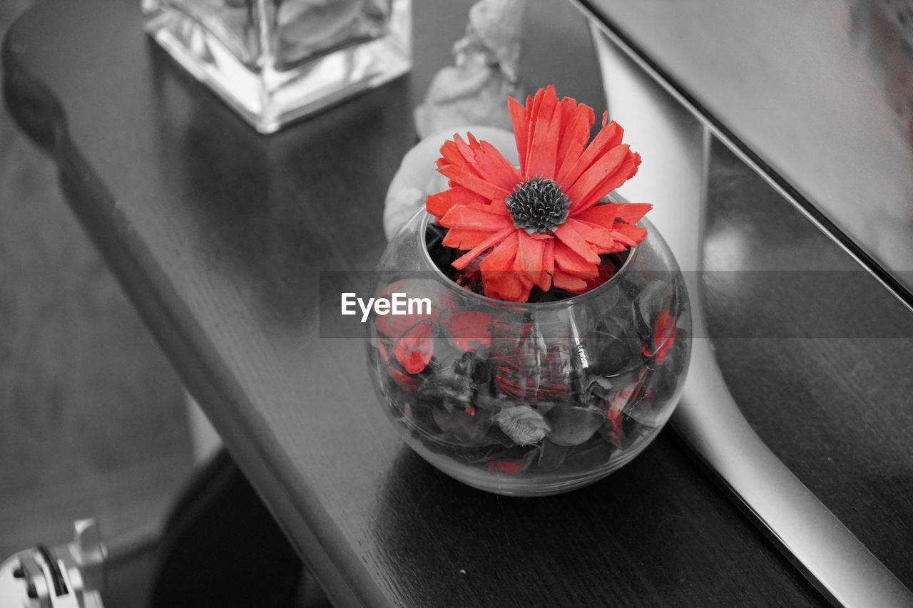 table, flower, no people, high angle view, indoors, close-up, freshness, red, flower head, day, nature