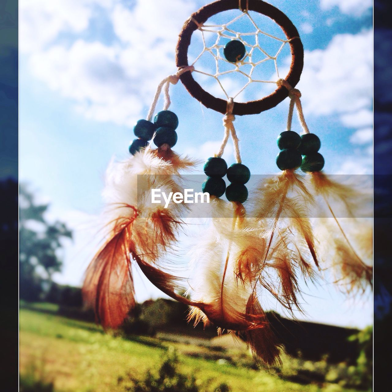 dreamcatcher, sky, hanging, close-up, no people, day, outdoors, feather, low angle view, nature, growth, tree, beauty in nature