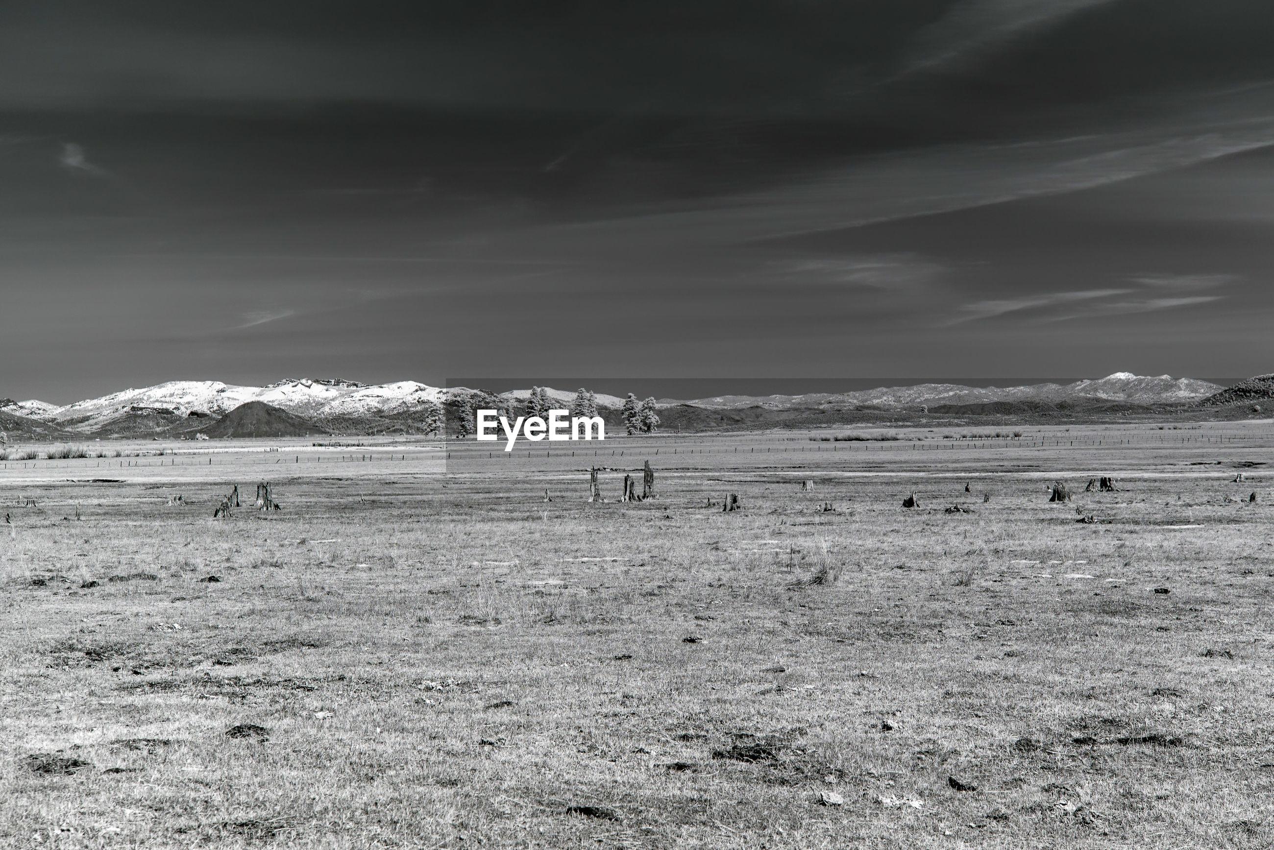 Monochrome landscape of sierra valley, california.