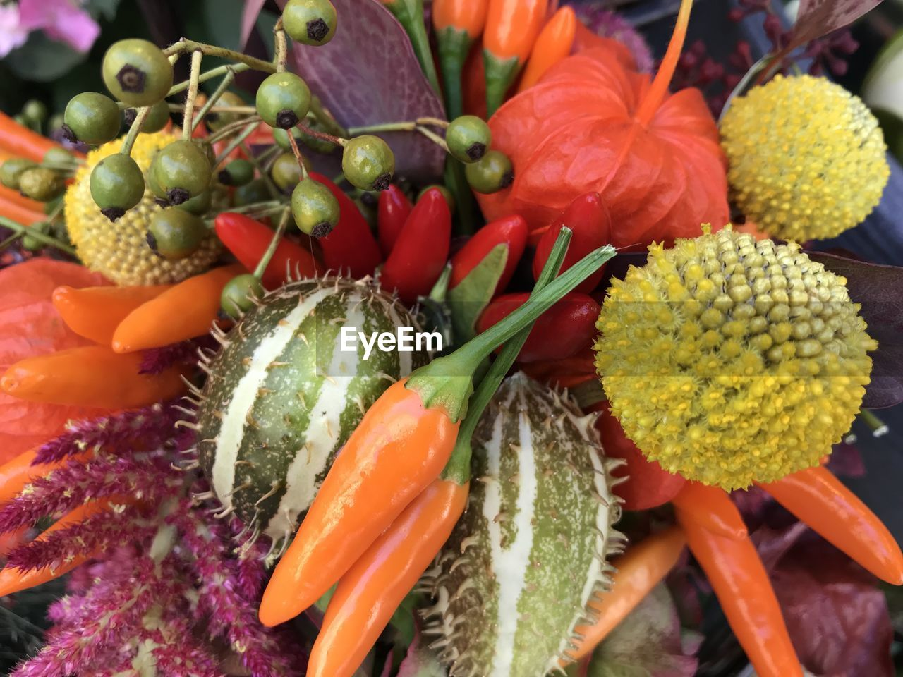 freshness, food, food and drink, close-up, healthy eating, wellbeing, choice, no people, flower, variation, red, flowering plant, vegetable, high angle view, beauty in nature, fruit, orange color, green color, plant, day