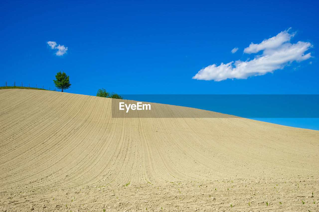 sky, landscape, land, blue, tranquil scene, scenics - nature, tranquility, environment, beauty in nature, nature, sand, cloud - sky, day, desert, no people, non-urban scene, outdoors, remote, plant, climate, arid climate