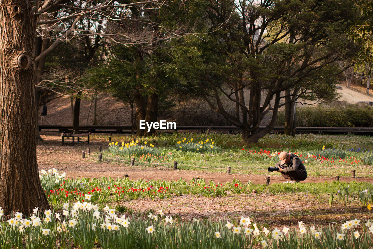 Man photographing in park