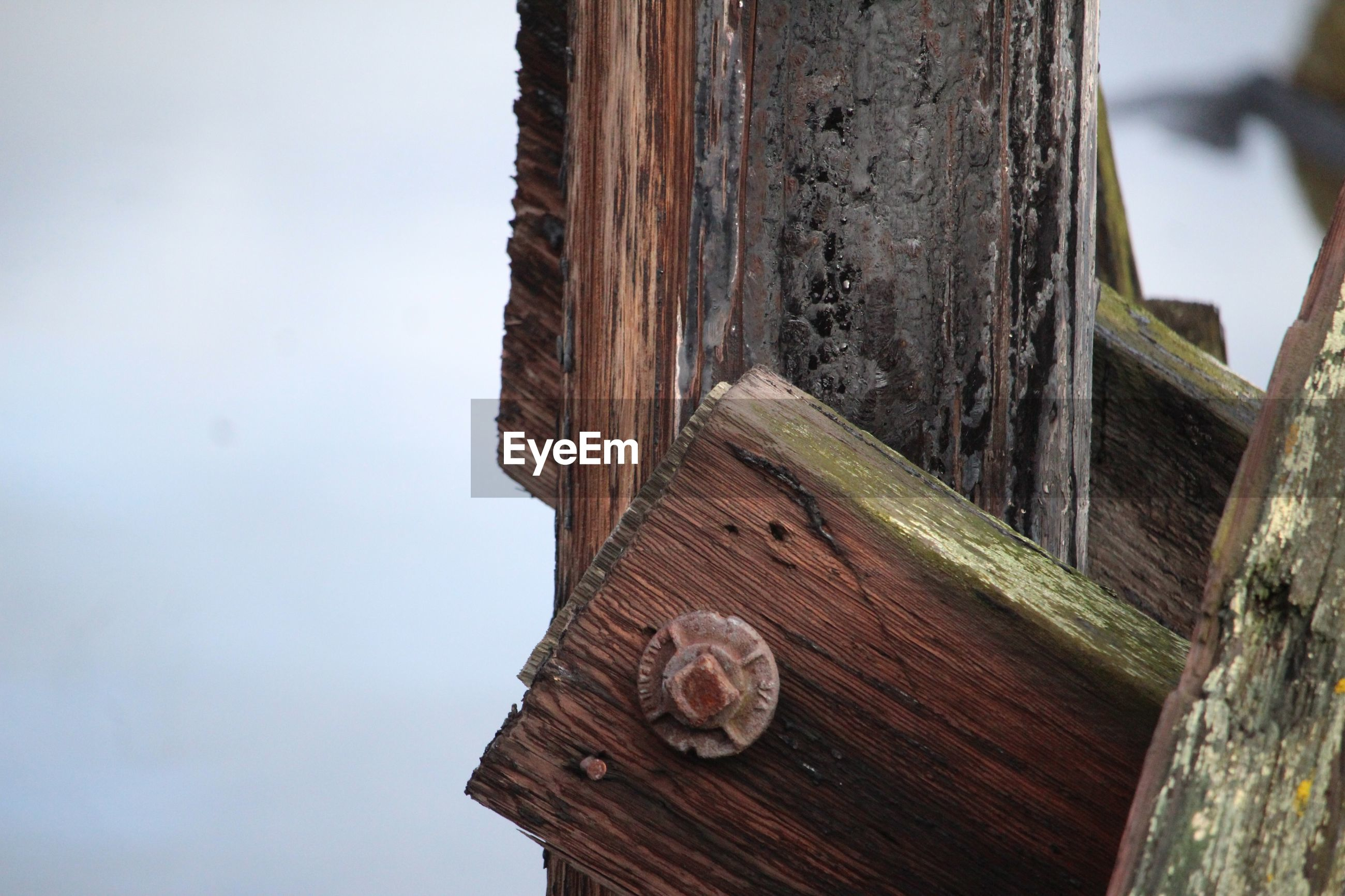 Close-up of wooden structure